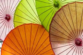 012017bamboo-umbrellas